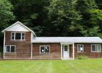 Foreclosed Home in BROADSTREET HOLLOW RD, Shandaken, NY - 12480