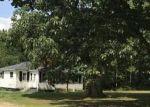 Foreclosed Home en N DORR RD, Merritt, MI - 49667