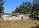 Foreclosed Home en NICHOLS RD, Holton, MI - 49425