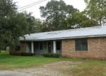 Foreclosed Home en COTEAU HOLMES HWY, Saint Martinville, LA - 70582