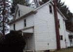 Foreclosed Home en HONEYHOLE RD, Drums, PA - 18222