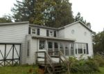 Foreclosed Home en MCMICHAEL RD, Prattsburgh, NY - 14873