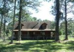 Foreclosed Home en BROWNS RD, Middleburg, FL - 32068