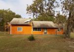 Foreclosed Home en HIGHGROVE RD, Spring Hill, FL - 34609