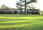 Foreclosed Home en HIGHWAY 136 E, Repton, AL - 36475
