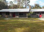 Foreclosed Home en PINE TREE RD, East Palatka, FL - 32131