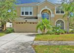 Foreclosed Home in STILL WIND DR, Tampa, FL - 33647
