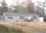 Foreclosed Home en FOX HILL RD, Mountain Dale, NY - 12763