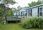 Foreclosed Home in N ROOSEVELT ST, Bellflower, MO - 63333