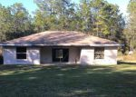 Foreclosed Home en SW 40TH ST, Dunnellon, FL - 34432