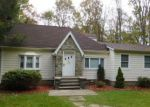 Foreclosed Home en SOUTH RD, Holmes, NY - 12531