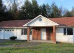 Foreclosed Home en HEMMER RD, Livingston Manor, NY - 12758