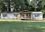 Foreclosed Home en W BRYANT RD, Center Point, LA - 71323