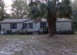 Foreclosed Home en NE 44TH CT, Anthony, FL - 32617