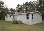 Foreclosed Home en FRANKLIN RD W, Hallsville, TX - 75650