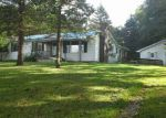 Foreclosed Home en RUSHTON RD, Central Lake, MI - 49622