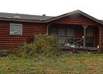 Foreclosed Home en BRUNSWICK RD, Holton, MI - 49425