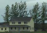 Foreclosed Home en 138TH AVE NE, Thief River Falls, MN - 56701