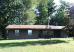 Foreclosed Home en W 124TH ST, Grant, MI - 49327