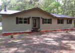 Foreclosed Home en SW DREAMER GLN, Fort White, FL - 32038