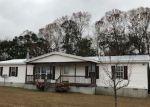 Foreclosed Home en CROSS JUSTICE RD, Irwinton, GA - 31042