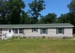 Foreclosed Home en E CEDAR RD, Twin Lake, MI - 49457