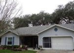 Foreclosed Home en PINE MEADOWS DR, Spring Hill, FL - 34606
