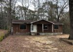 Foreclosed Home en OLD GULFCREST RD, Chunchula, AL - 36521