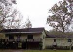 Foreclosed Home en BYRD PARKER DR, Wewahitchka, FL - 32465
