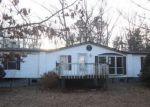 Foreclosed Home en BEARS DEN TRL, Greenville, VA - 24440