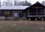 Foreclosed Home en W HORSESHOE RD, Tallahassee, FL - 32317