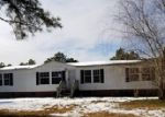 Foreclosed Home en PUNCH BOWL RD, Hobbsville, NC - 27946