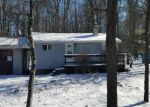 Foreclosed Home en BUCKHILL RD, Albrightsville, PA - 18210