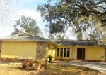 Foreclosed Home en S DUNCAN AVE, Clearwater, FL - 33756