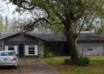 Foreclosed Home in WILSON CIR, Lutz, FL - 33548