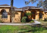 Foreclosed Home en SWIFT CREEK CIR, Dover, FL - 33527