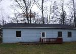 Foreclosed Home en PRINCESS DR, Shelbyville, MI - 49344