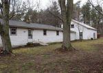 Foreclosed Home en GEIGER CT, Belding, MI - 48809