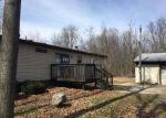 Foreclosed Home en BUTLER RD, Portland, MI - 48875