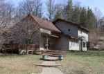 Foreclosed Home en DEADSTREAM RD, Honor, MI - 49640
