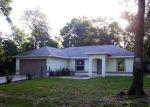 Foreclosed Home en JUNIPER TRL, Ocala, FL - 34480