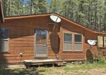Foreclosed Home en FOREST LAKES DR, Bayfield, CO - 81122