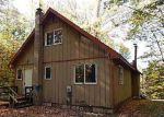 Foreclosed Home en FOREST TRL, Leroy, MI - 49655