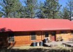 Foreclosed Home en WAPITI CIR, Buena Vista, CO - 81211
