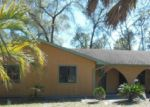 Foreclosed Home in S LAWTON AVE, Orange City, FL - 32763