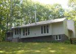 Foreclosed Home en ELLEN DR, Harrisville, MI - 48740