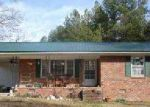 Foreclosed Home en PINCKNEY RD, Chester, SC - 29706