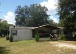 Foreclosed Home en E STATE ROAD 100, Lake Butler, FL - 32054