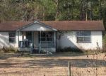 Foreclosed Home in LETTUCE LN, Brunswick, GA - 31525
