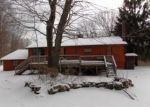 Foreclosed Home en ELK POINT RD, Livingston Manor, NY - 12758